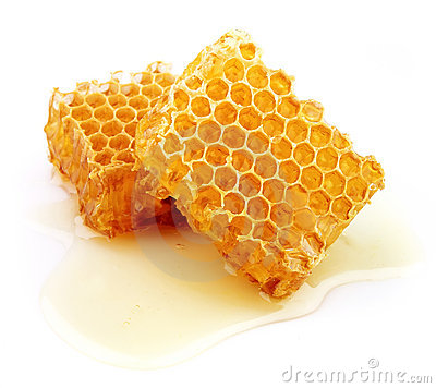 Free Honeycomb Royalty Free Stock Photo - 20989965