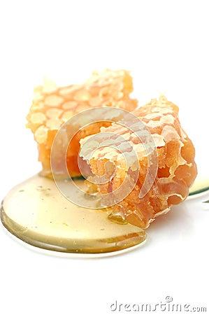 Free Honeycomb Royalty Free Stock Photography - 2552587