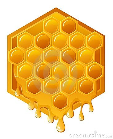 Free Honeycomb Royalty Free Stock Images - 5576149