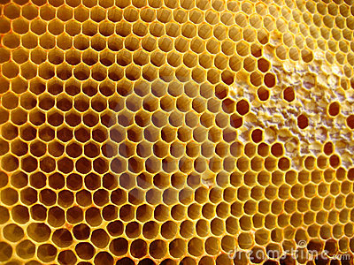 Honeycomb Shapes Stock Photography - Image: 1495082