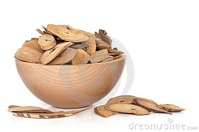 Honeysuckle Stem Herb
