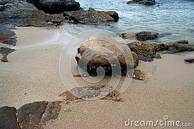 Hong Kong Beach 5