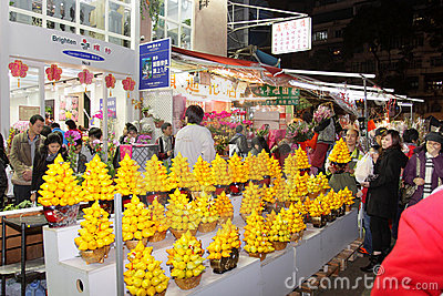 Hong Kong : Flower Market Royalty Free Stock Image - Image: 22953166