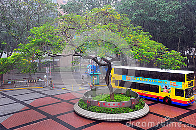 Hong kong science museum courtyard