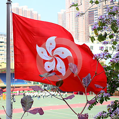 Hong Kong Special Administrative Region flag