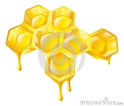 Honingraat met druipende honing