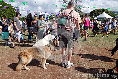 Honolulu Pet Walk 2014, people and dogs explore booth at Ala Moa