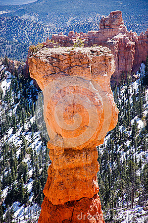Free Hoodoo, Agua Canyon, Bryce Canyon On Sunshine Stock Images - 79145834