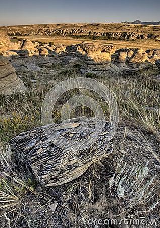 Hoodoo Badlands Alberta Canada