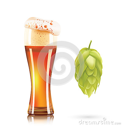 Hop plant and elegant glass of beer 3d vector icon isolated on white background. Hops beer photo-realistic vector Vector Illustration