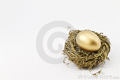 Hopeful Gold Financial Nest Egg