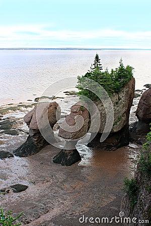 Free Hopewell Rocks, New Brunswick, Canada Stock Photography - 15598312