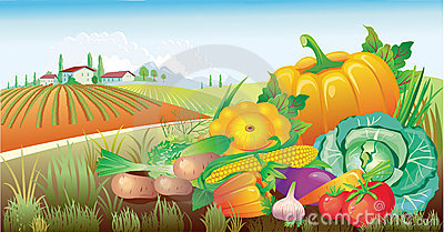 Horizontal avec un groupe de légumes