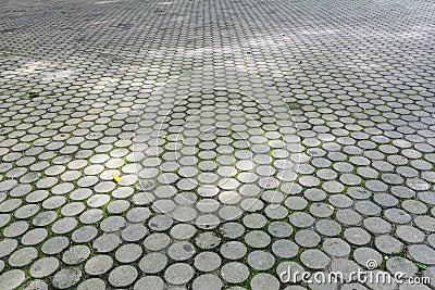 Hormig n piso del bloque del cemento de camino en el for Bloques de cemento para pisos de jardin