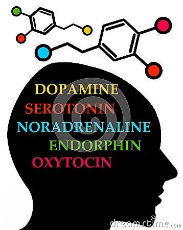 Free Hormones Stock Image - 34340251