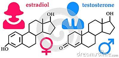 Hormones Stock Image - Image: 30378721