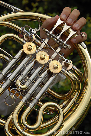 Free Horn Detail Royalty Free Stock Photo - 1008025