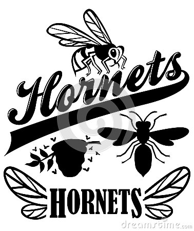 Free Hornets Team Mascot Stock Photo - 32871110