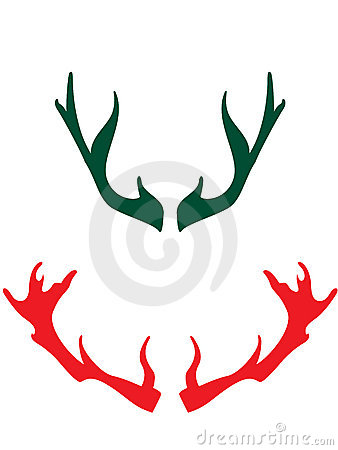 Horns of the deers