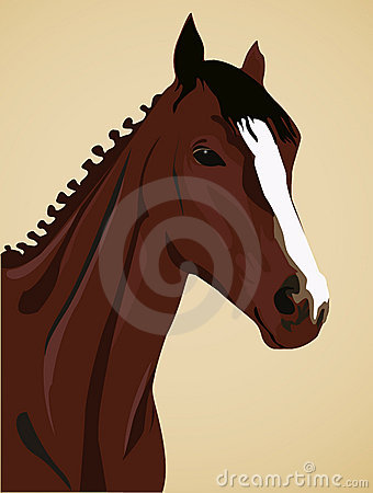 Free Horse Stock Photos - 2666173