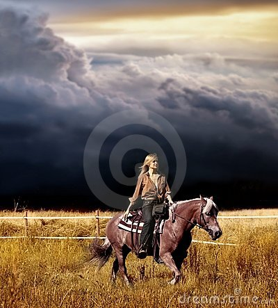 Free Horse Royalty Free Stock Photography - 6389317