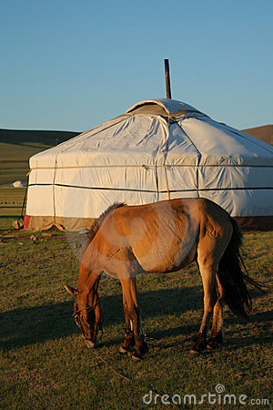 Free Horse And Ger Terelj Mongolia Central Asia Stock Images - 7493554