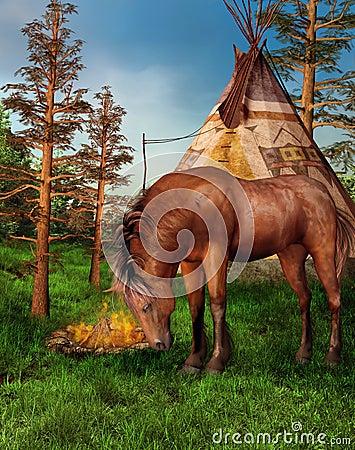 Horse in a camp