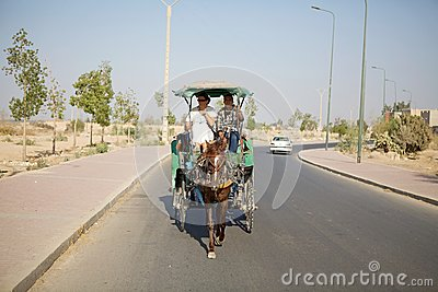 Horse and carriage Editorial Stock Photo