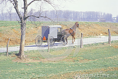 A horse and carriage in an Amish farming community Editorial Stock Photo