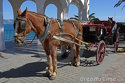Horse & carriage, Balcony of Europe, Nerja, Spain.