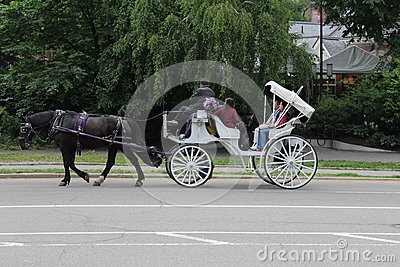 Horse and Carriage Ride, New York City