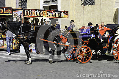 Horse carriage with driver Editorial Image