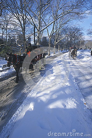 Free Horse Carriage Ride In Central Park, Manhattan, New York City, NY After Winter Snowstorm Royalty Free Stock Photos - 52266888