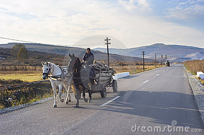 Horse cart Editorial Stock Photo