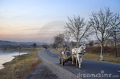 Horse cart Editorial Photo