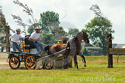 Horse and cart race Editorial Photo