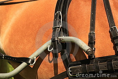 Horse collar - closeup.