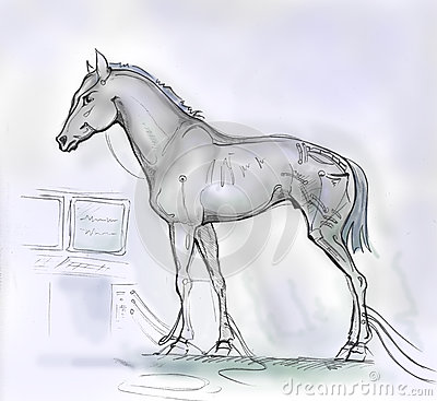 Horse - the computer