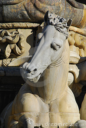 Free Horse Detail From Neptune Statue, Florence Royalty Free Stock Photos - 5512088