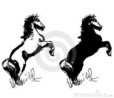 Horse drawings vector