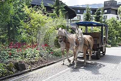 Horse-drawn carriage in Bavaria