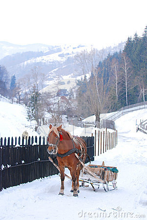 Horse drawn sled