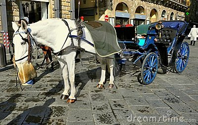 Horse drawn taxi in Florence city , Italy Editorial Photo