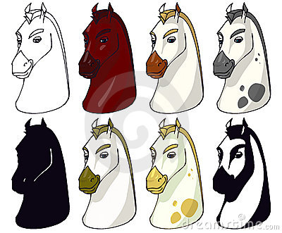 Horse faces