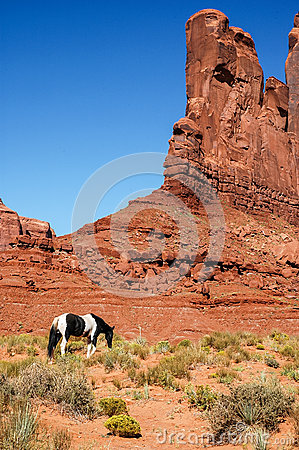 A horse in front of a red rock formations, USA
