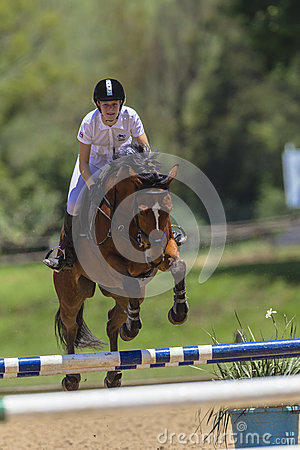 Horse Girl Jump Equestrian Editorial Stock Photo
