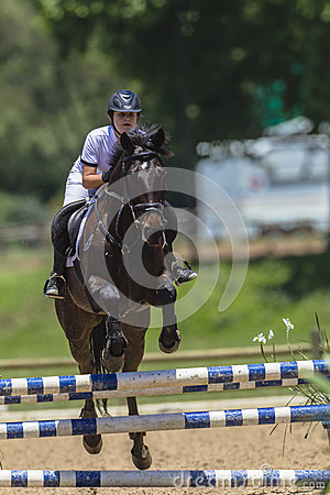 Horse Girl Jumping Poles Editorial Image