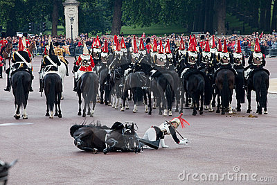 Horse guard fall Editorial Image