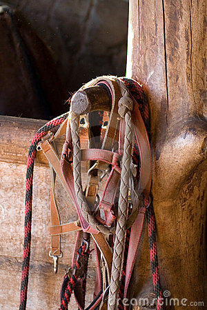 Horse harness  and stable box