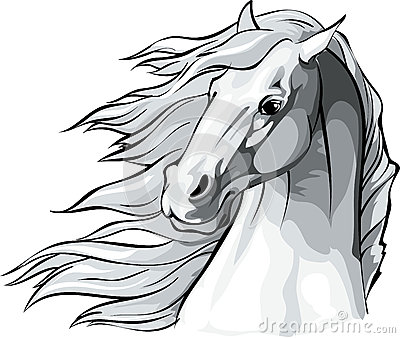 Horse head with mane flowing in the wind. Vector Illustration
